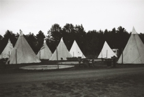 Tropical Island Camp